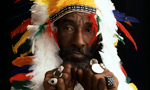 Lee «Scratch» Perry. «Higher Level» (feat. Tunde Adebimpe)