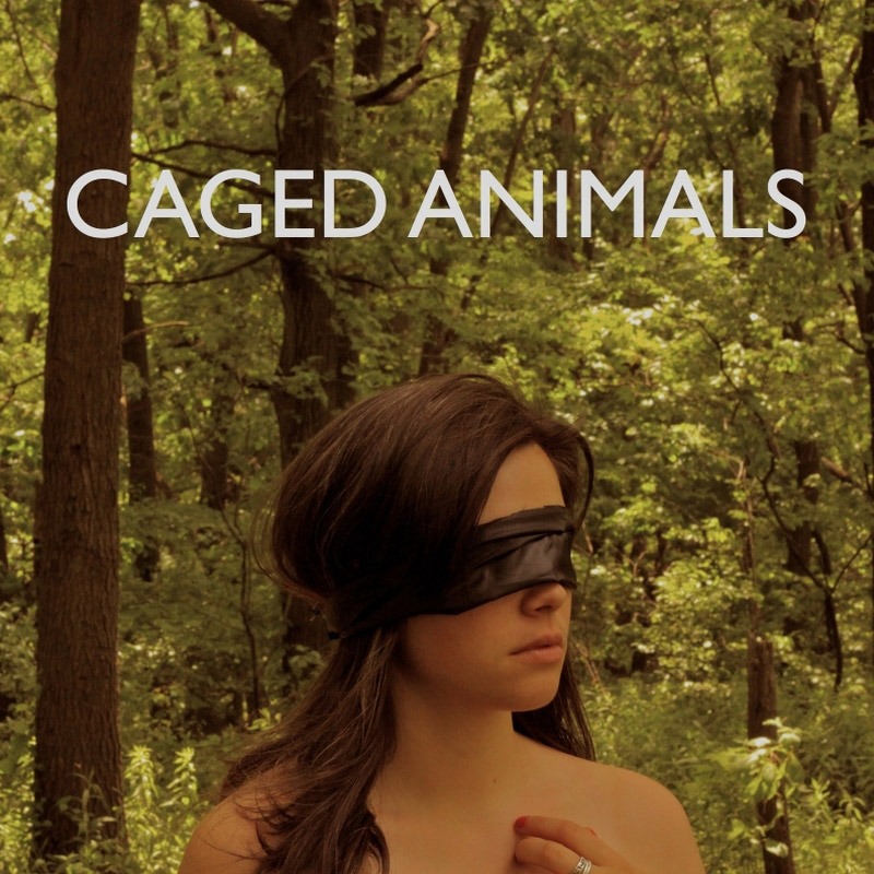 Caged Animals. «All the Beautiful Things in the World»