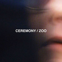 Here We Go Magic, Ceremony, Carter Tutti Void и др.